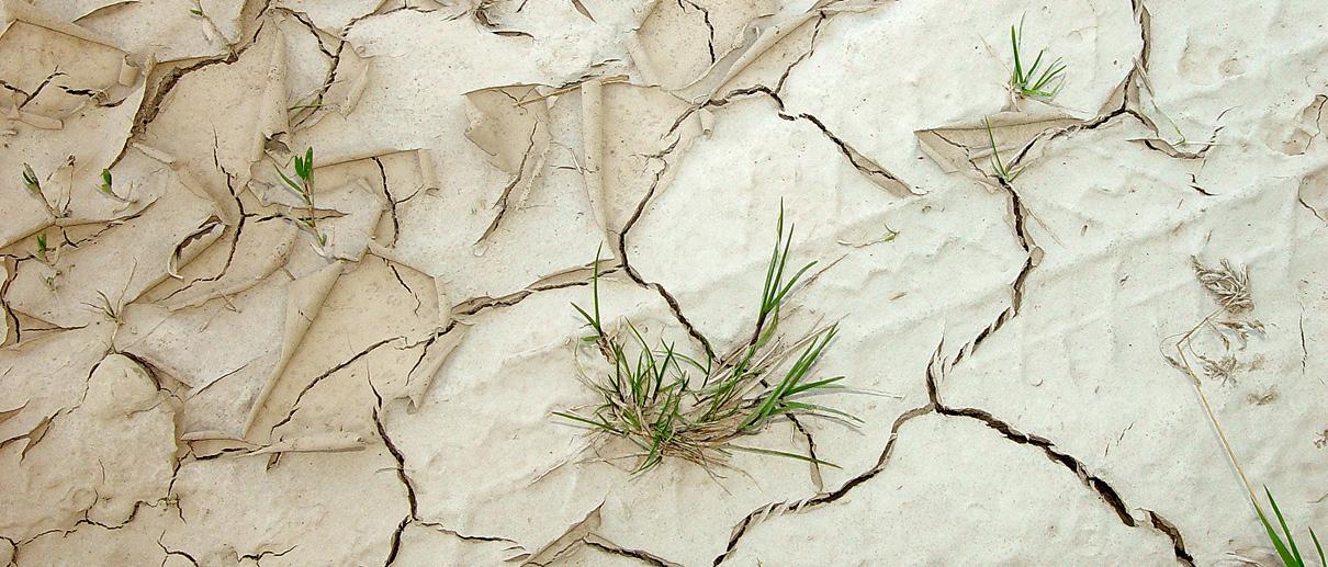 slide_landwirtschaft3